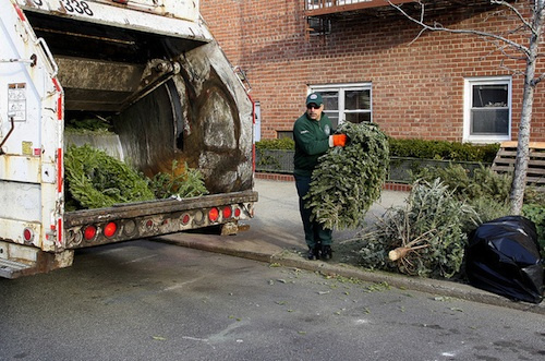 dsny-christmas-tree-collection-curbside