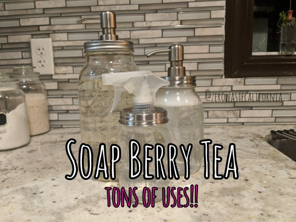 Soapberries A Multi Purpose Cleaner Zero Waste California