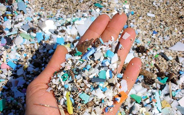 Microplastics-Blog